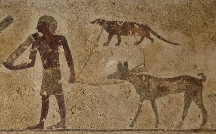 ancient dogs