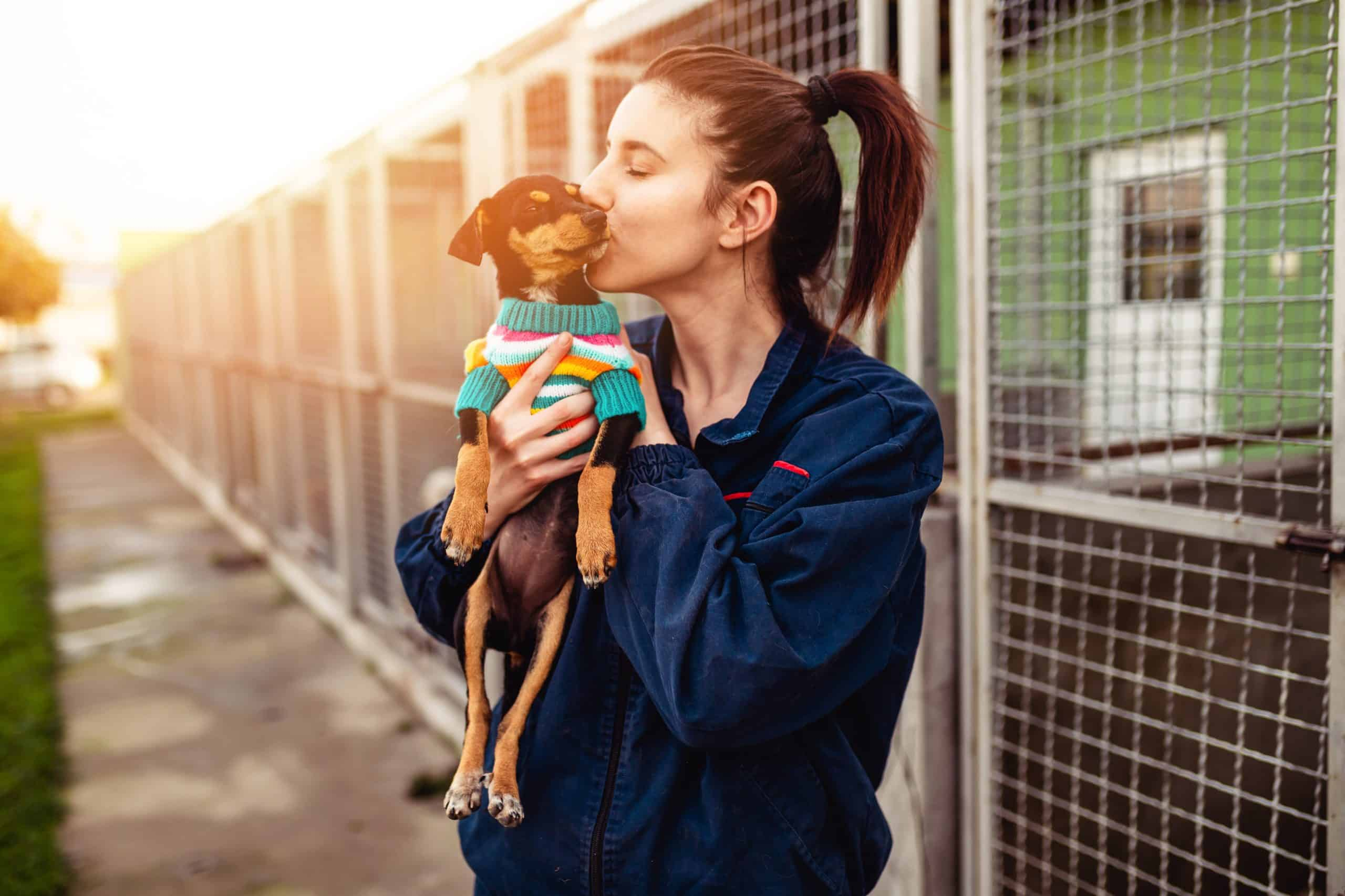 Young woman caring for a shelter dog.